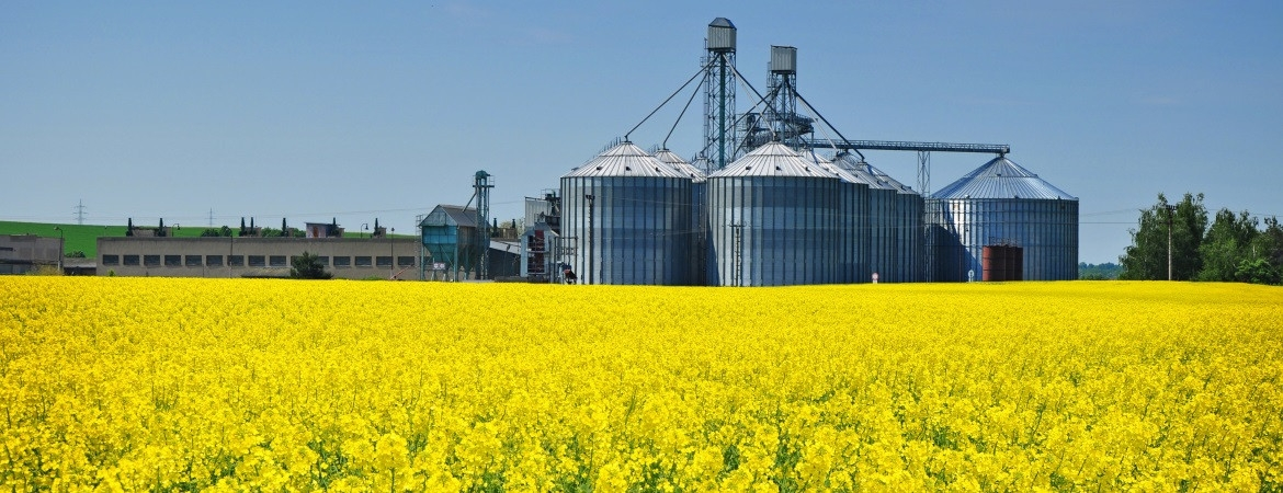16_canola-grain-storage-28-1170-450-100 AgVisory Valuation and Consulting for your AgriBusiness - AgVisory