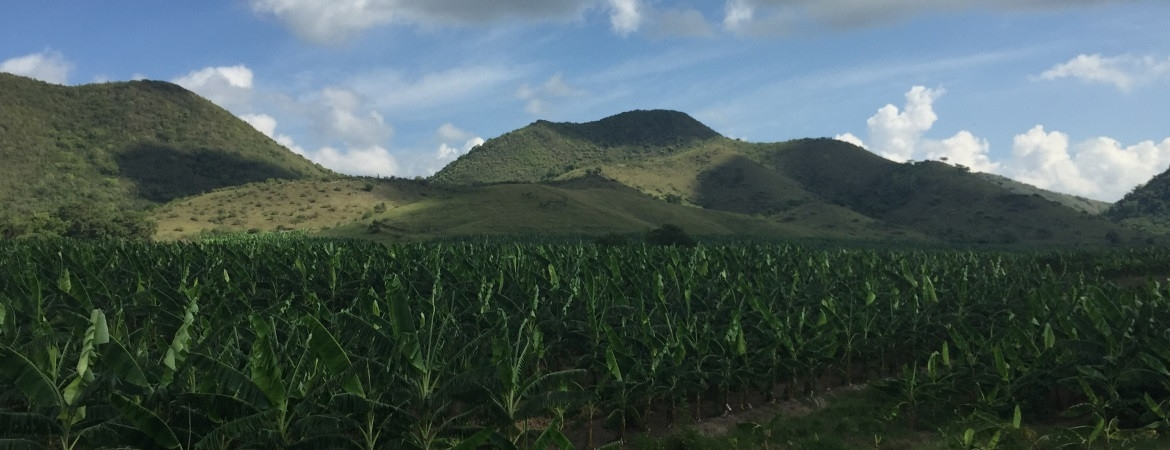 26_farm-with-mountains-24-1170-450-100 AgVisory Valuation and Consulting for your AgriBusiness - AgVisory